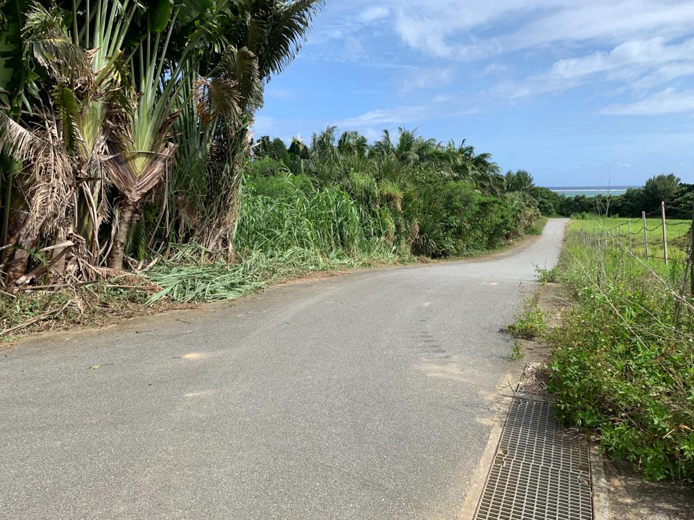 2日ぶりに西表島へ。草刈り大会。 No.18